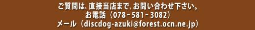 ご質問は、直接当店まで、お問い合わせ下さい。お電話(078ー581ー3082)メール(discdog-azuki@forest.ocn.ne.jp)